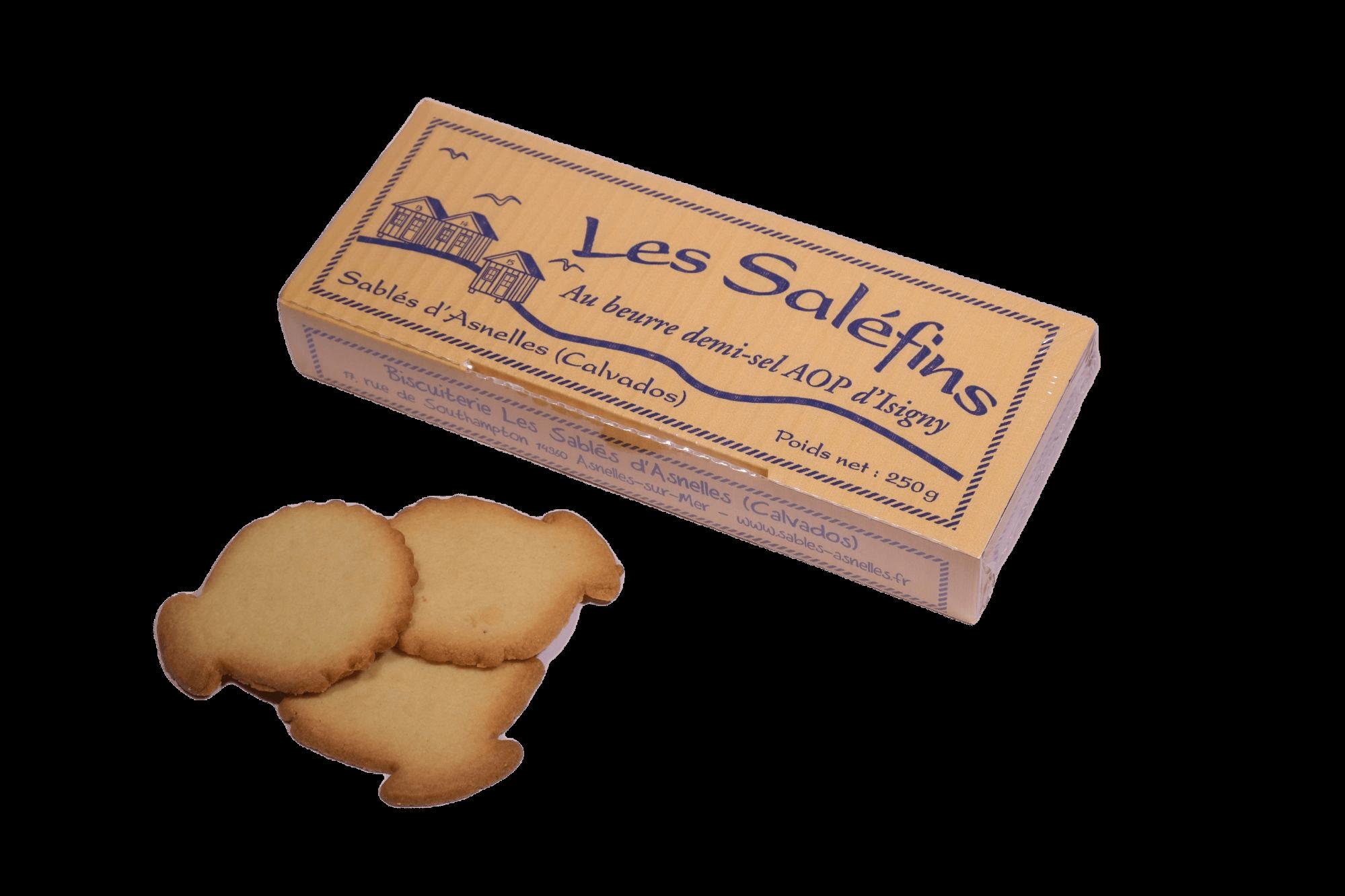 salefin-sables-asnelles